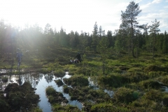 endurokul-i-finska-lappland-030
